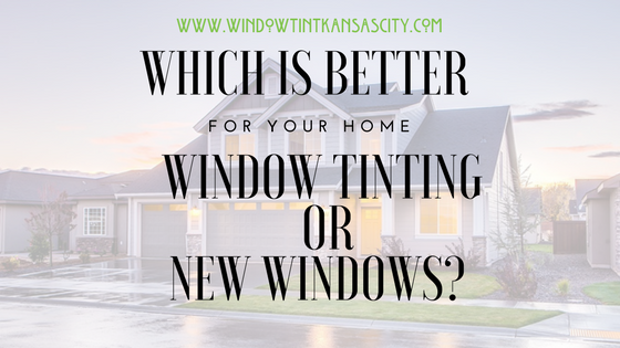tinting or new windows